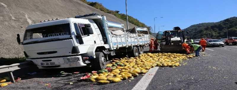 TEM Otoyolu'nda zincirleme kaza: 2 yaralı