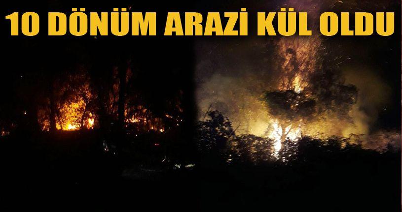 Orman yangınında 10 dönüm arazi küle döndü