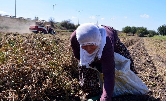 Bakan Pakdemirli'den çiftçiye ödenek müjdesi