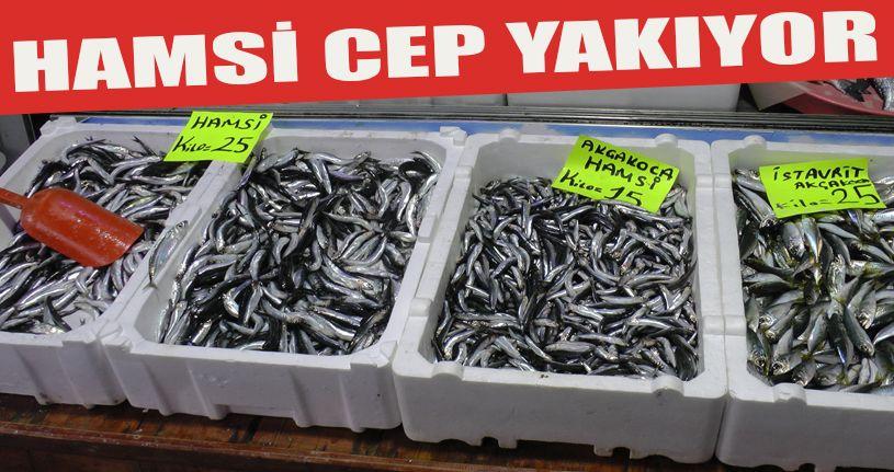 Karadeniz'de hamsi fiyatı tavan yaptı