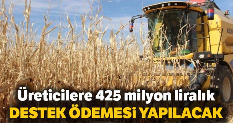 Üreticilere 425 milyon liralık destek ödemesi yapılacak