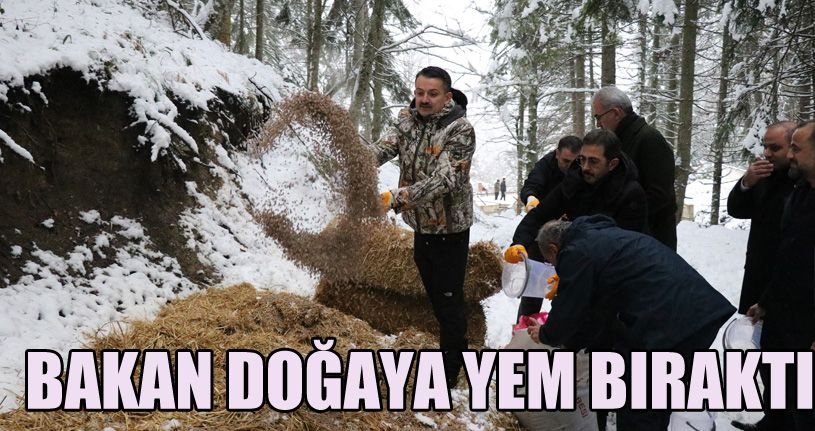 Tarım ve Orman Bakanı Pakdemirli yaban hayvanlarına yem bıraktı