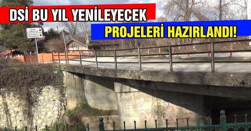 Köprü bu yıl yapılacak