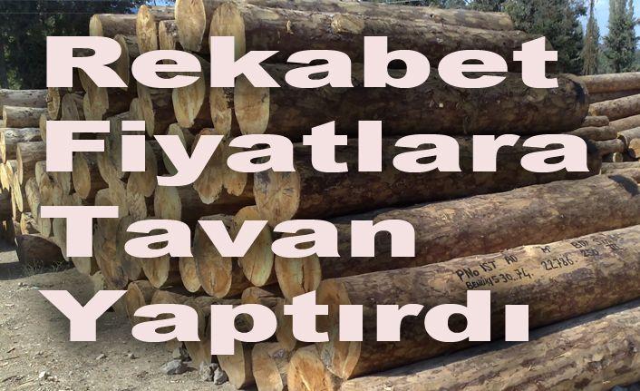 2 milyon 24 bin bin liralık orman emvali satıldı