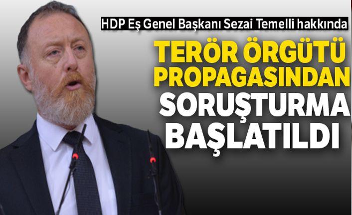 HDP Eş Genel Başkanı Temelli'ye 'örgüt propagandasından' soruşturma