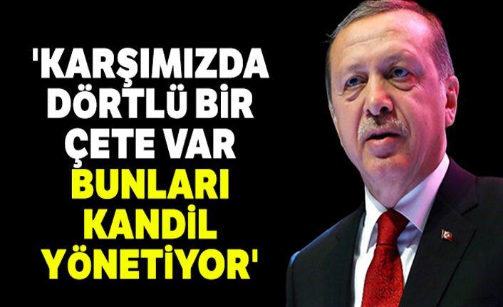 Cumhurbaşkanı Erdoğan'dan önemli açıklamalar: 'Karşımızda dörtlü bir çete var, bunları Kandil yönetiyor'