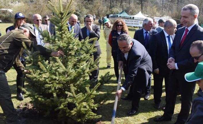 Hükümlülerle Birlikte Ağaç Dikildi