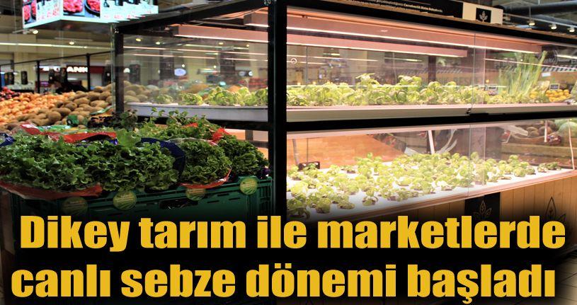 Dikey tarım ile marketlerde canlı sebze dönemi başladı