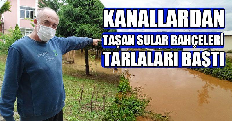 Sağanak Yağışlar Su Baskınlarına Neden Oldu