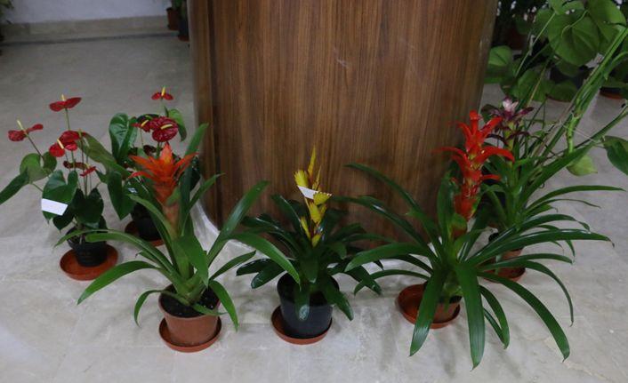 Başkan Özcan, tebrik çiçeklerini engelliler için satışa çıkardı