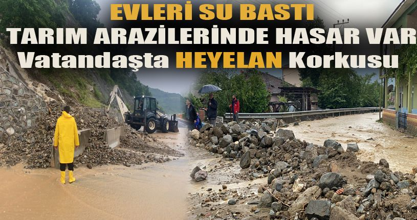 Gölyaka'da dereler taştı evleri su bastı