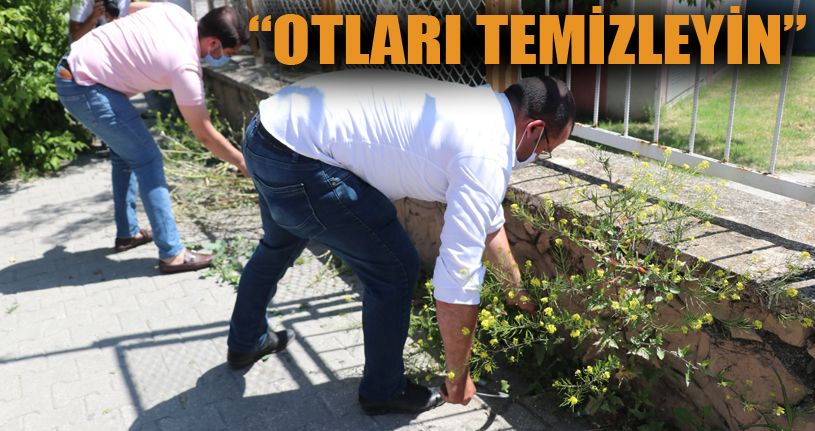 AK Parti İl Başkanı'ndan Başkan Özcan'a ot tepkisi