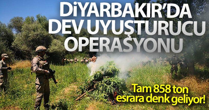 Diyarbakır'da dev uyuşturucu operasyonu: Tam 858 ton esrara denk geliyor