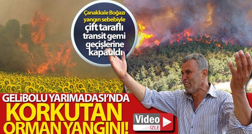Çanakkale'deki poyraz orman yangınına müdahaleyi güçleştiriyor.