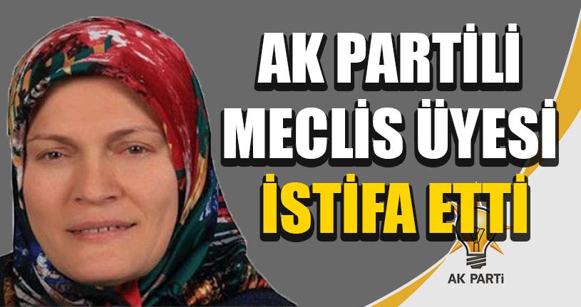 AK Partili Meclis Üyesi İstifa Etti