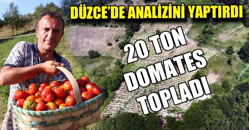Ürettiği domateslerin tohumlarını gençlere ücretsiz verecek