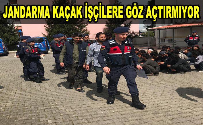 Jandarma ekipleri kaçak çalışan yabancıları yakaladı