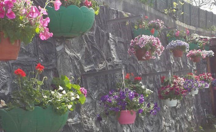 Duvarlar estetikle buluşuyor