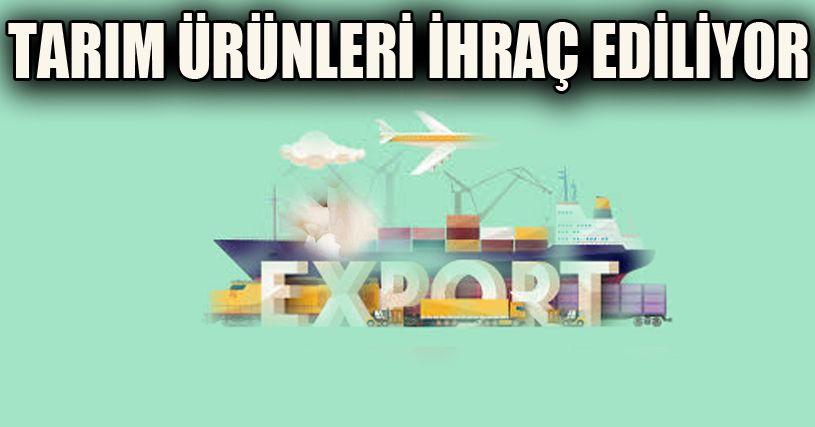 Düzce'den 2,5 milyon ton ürün yurt dışına gönderildi