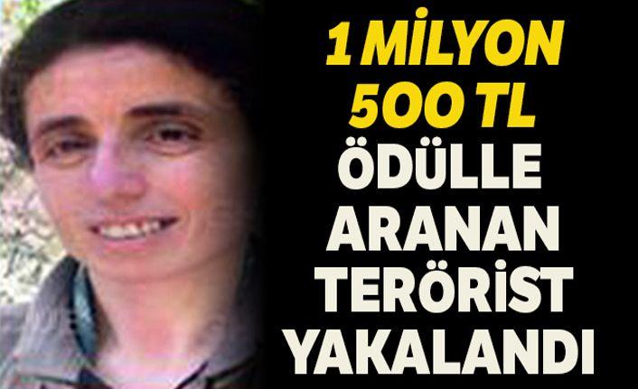 1 milyon 500 bin TL ödülle aranan terörist  yakalandı