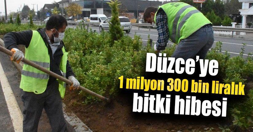 Düzce'ye 1 Milyon 300 Bin Liralık Bitki Hibesi