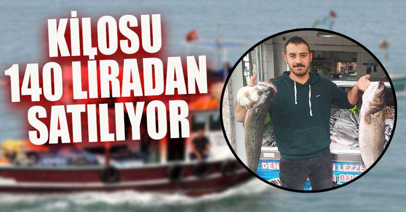 Balıkçıların Ağlarına Bu Kez Dev Karadeniz Levreği Takıldı