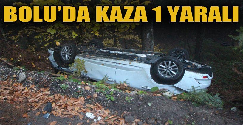İran asıllı akademisyenin otomobili şarampole devrildi: 1 yaralı