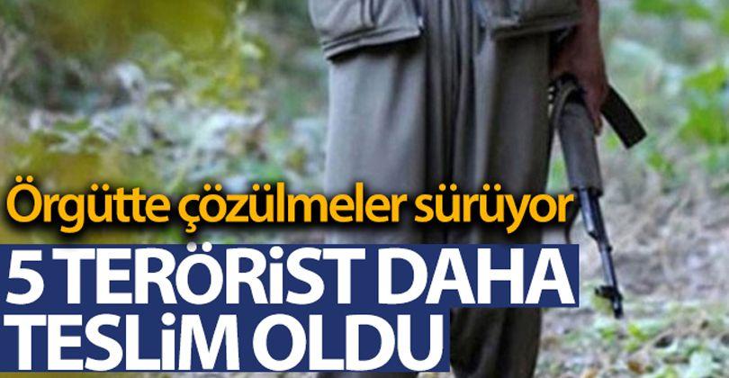 Örgütte çözülmeler sürüyor! 5 PKK terör örgütü mensubu teslim oldu