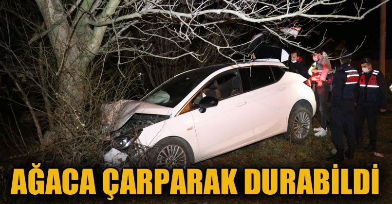 Kontrolden çıkan otomobil ağaca çarptı: 1 yaralı