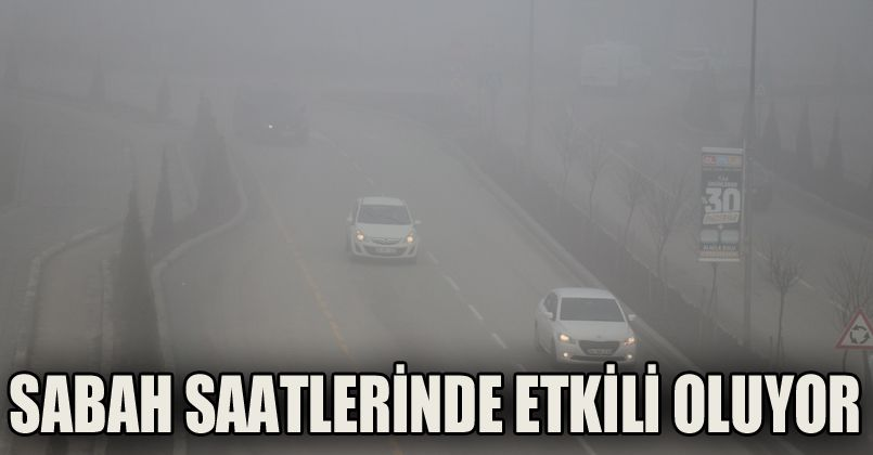 Bolu'da yoğun sis etkili oluyor