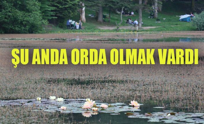 Bayram tatilinde Gölcük Tabiat Parkı'nda insan seli yaşandı