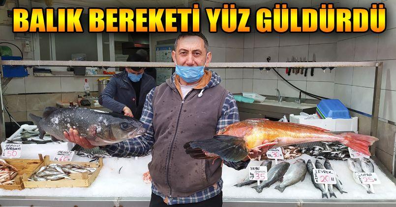 Batı Karadeniz'in incisi Akçakoca'da balık bereketi