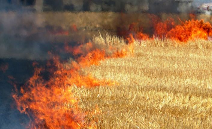 Anız, tarla, bahçe, orman yangınlarına dikkat