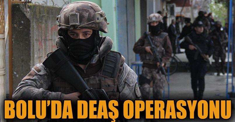 DEAŞ operasyonu: 1 tutuklu