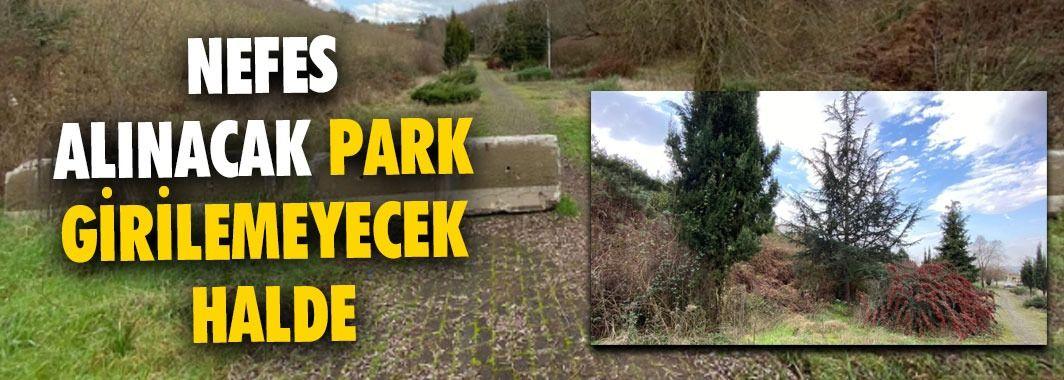 Nefes Alınacak Park Girilemeyecek Halde
