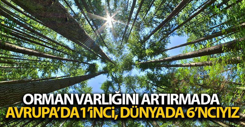 Türkiye orman varlığını artırmada Avrupa'da 1'inci, dünyada 6'ncı