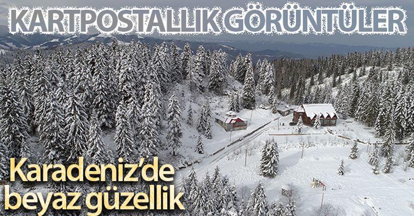 Ordu'dan kartpostallık kar görüntüleri