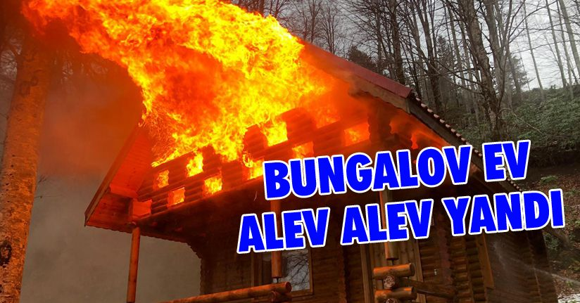 Bungalov Ev Alev Aldı