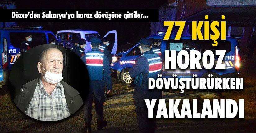 77 Kişi Horoz Dövüştürürken Yakalandı