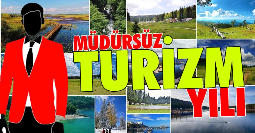 Turizm müdürsüz, Turizm yılı