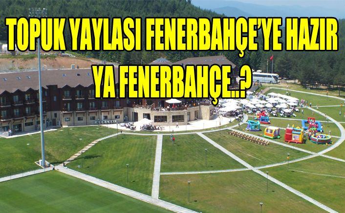 Fenerbahçe bu sene Düzce'ye gelecek mi?