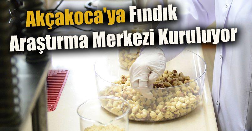 Akçakoca'ya Fındık Araştırma Merkezi Kuruluyor