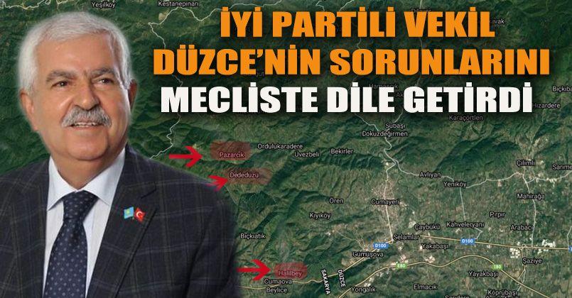 Düzce'nin Sorunlarını Mecliste Dile Getirdi