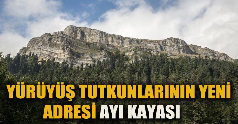 Ayı Kayası Tabiat Parkı yürüyüş tutkunlarının adresi oldu