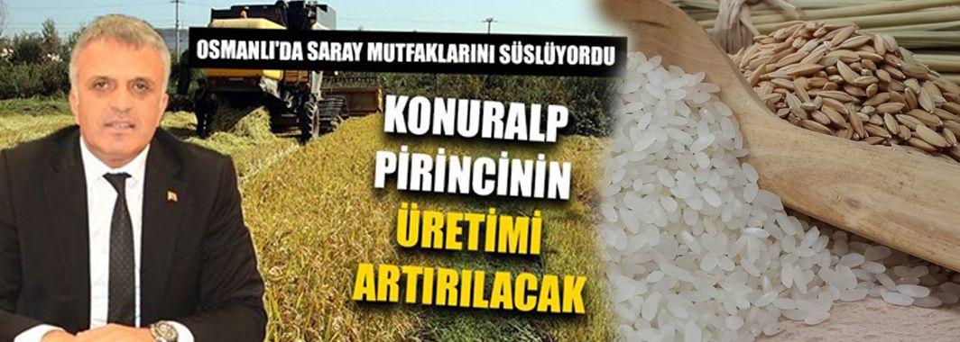 Konuralp Pirincinin Üretimi Artırılacak