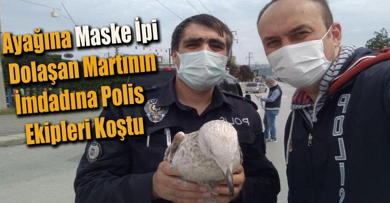 Ayağına maske ipi dolaşan martının imdadına polis ekipleri koştu