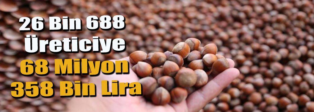 Düzceli fındık üreticilerine 68 milyon lira
