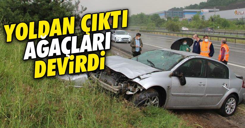 Yoldan çıkan otomobil ağaçları devirdi: 1 yaralı