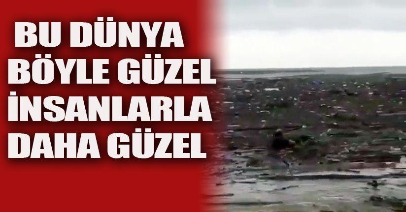 Sele kapılan köpeği vatandaş yüzerek kurtardı