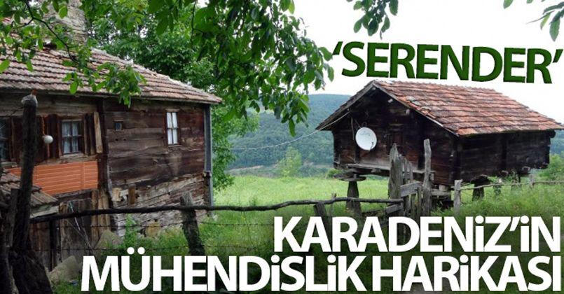 Karadeniz'in mühendislik harikası: Serender